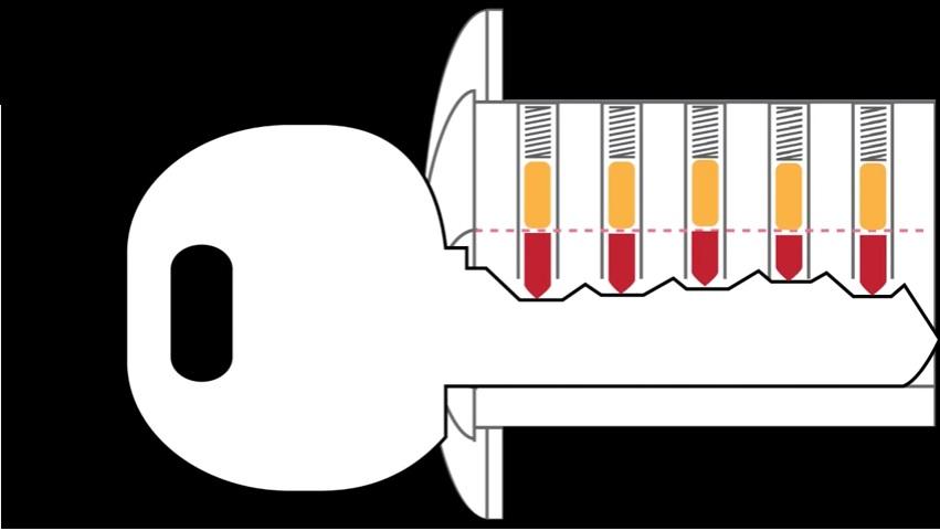 System działania normalnej wkładki